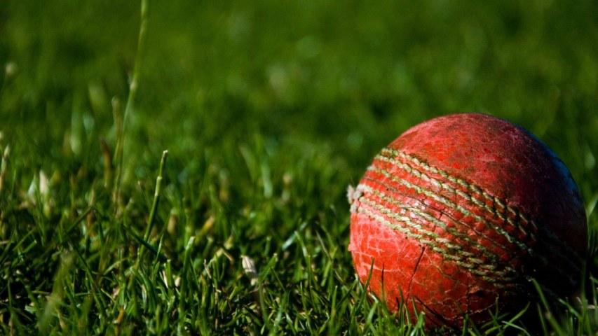 Cricket storage